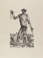 Tabulae Selectae, plate 17