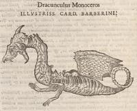 Hernández's Dragon Skeleton
