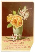 Brown & Maybury, Druggists