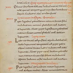 Apicius [De re culinaria Libri I-IX]