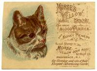 Morse's Yellow Dock the Great Blood Purifier and Kidney Remedy