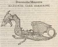 Hernández's Dragon Skeleton