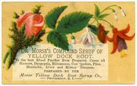 Dr. Morse's Compound Syrup of Yellow Dock Root
