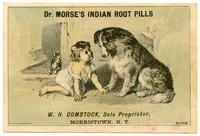 Dr. Morse's Indian Root Pills