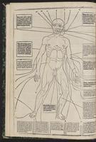 fasciculus_medicinae1513_0010