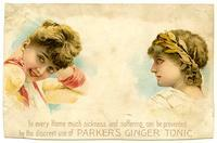 In every Home much sickness and suffering can be prevented by the discreet use of Parker's Ginger Tonic