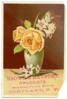 Brown & Maybury, Druggists