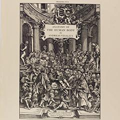 Publisher's Prospectus & Order Form, Icones Anatomicae