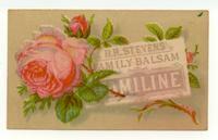 H.R. Stevens' Family Balsam