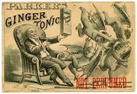 Parker's Ginger Tonic