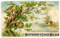 Your Cough or Cold can be Cured by Using Hartshorn's Cough Balsam