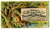 Dr. Morse's Compound Syrup of Yellow Dock Root Regulating the Liver and Digestive Organs and Purifying the Blood