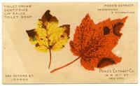 Pond's Extract Co.